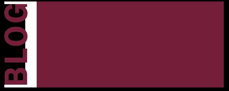 BLOG DSS
